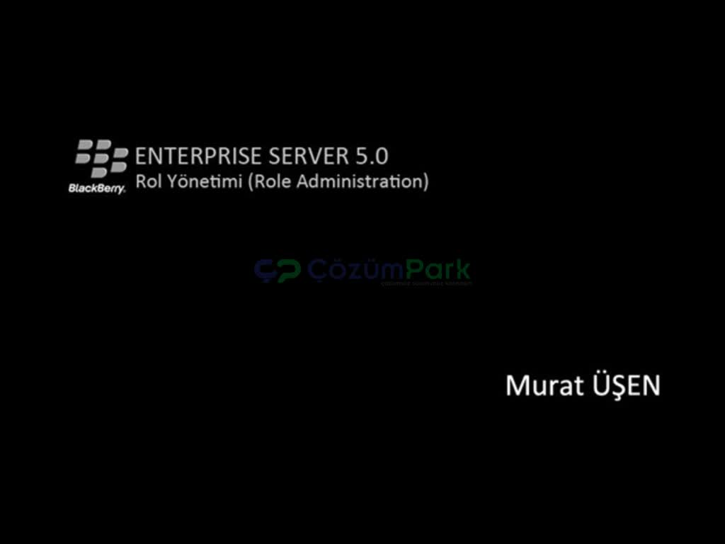 BlackBerry Enterprise Server 5.0 Role Administration
